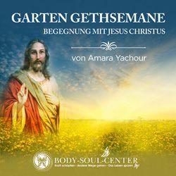 Garten Gethsemane 250