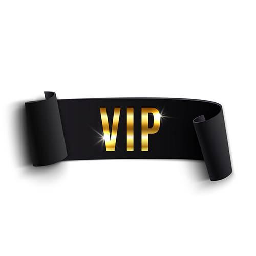 VIP Ausbildungen Online